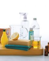 limonla-temizlik