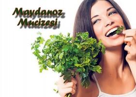 maydanoz-mucizesi